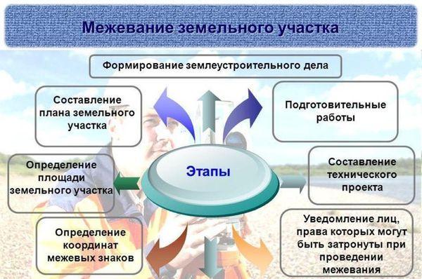 Формы и методы банковского кредитования